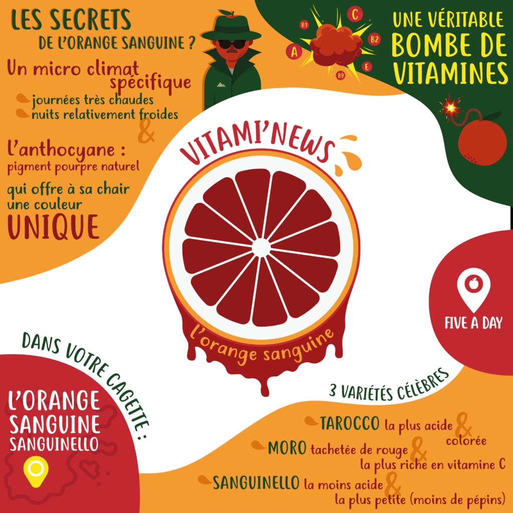 newsletter-orange-sanguine
