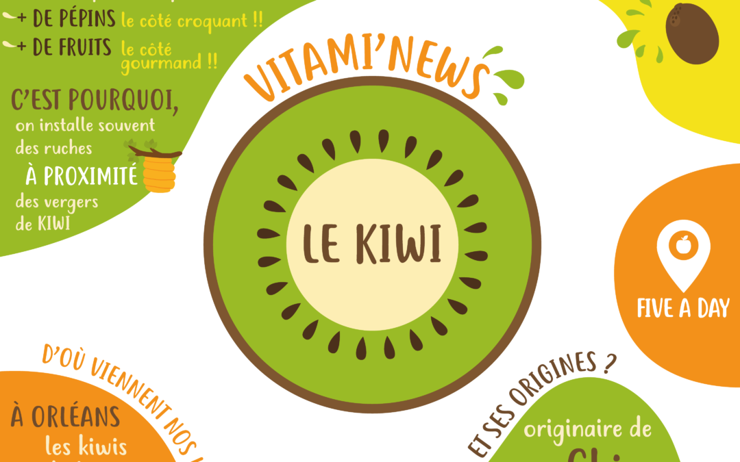 newsletter-kiwi
